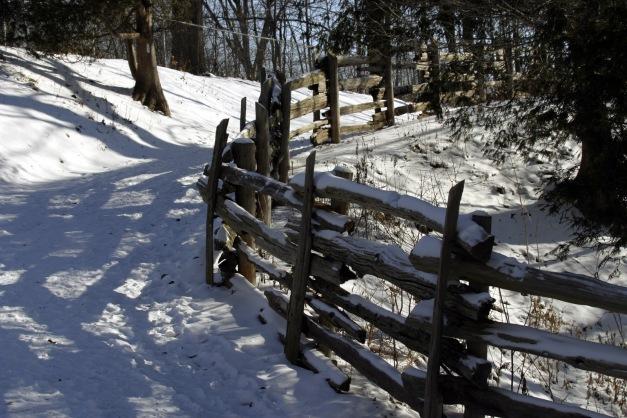 Zaun im Schnee