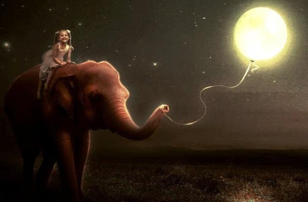 elefant und kind